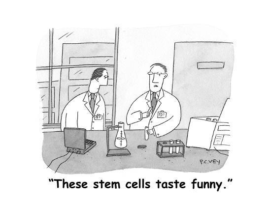 """These stem cells taste funny."" - Cartoon-Peter C. Vey-Premium Giclee Print"