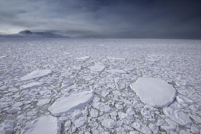 Thick Ice Pack Fills the Grandidier Channel-Jim Richardson-Photographic Print