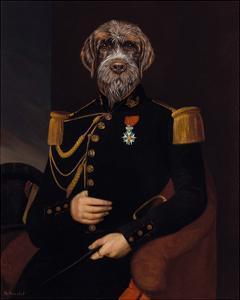 Le Commandant by Thierry Poncelet