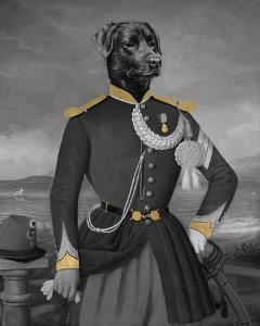 Portrait Dore - Devant la Rade d'Alger by Thierry Poncelet