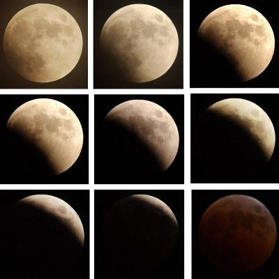 This Sequence of Photographs Shows the Total Eclipse of the Moon over Denver, Colorado--Photographic Print