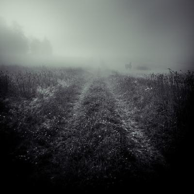 This World-Svante Oldenburg-Photographic Print