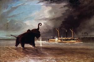 Elephant in Shallow Waters of Shire River, 1859 by Thomas Baines