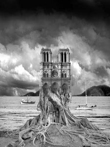 Stumped by Thomas Barbey