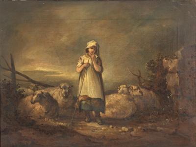 Gloucestershire Girl Keeping Sheep