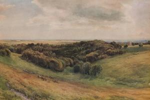 Arundel Park, 1874 by Thomas Collier