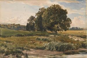 Study of Trees in Parham Park by Thomas Collier