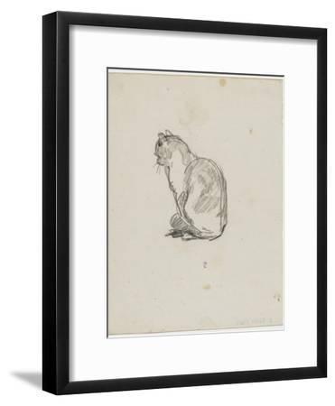 Etude de chat (Villiers)