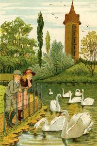 Paris Zoo - children watching swans by Thomas Crane