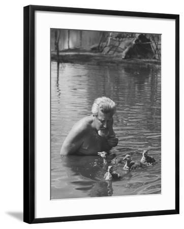 Dr. Konrad Lorenz, Viennese Animal Behaviorist, Surrounded by Family of Graylag Goslings