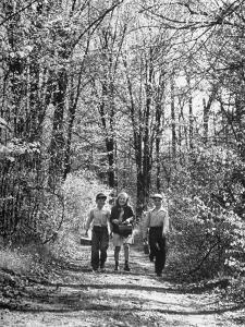Three Children on Their Way to School During the Last Week by Thomas D. Mcavoy