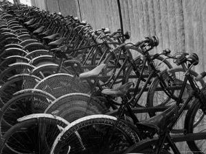 View of Bicycles from a Story Concerning Italy by Thomas D. Mcavoy