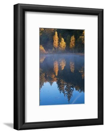Germany, Schleswig-Holstein, Lauenburg Lakes Nature Park, Grundloser Kolk