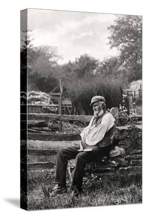 The Woodman, 1901