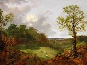 Wooded Landscape with a Cottage, Sheep and a Reclining Shepherd, c.1748-50 by Thomas Gainsborough