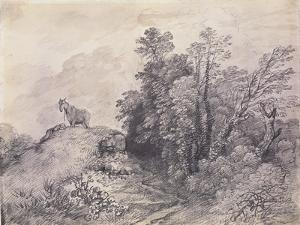 Wooded Landscape with Horse and Boy Sleeping, C.1757 by Thomas Gainsborough