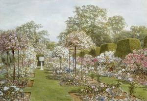 The Rose Garden, Clandon Park, Surrey, England by Thomas H^ Hunn
