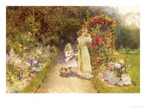 In the Rose Garden by Thomas J. Lloyd