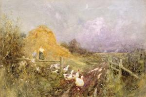 Driving Geese, Early Evening, 1907 by Thomas James Lloyd