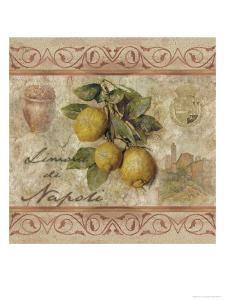 Limonidi Napoli by Thomas L. Cathey