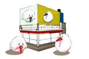 Birdiehoose by Thomas MacGregor