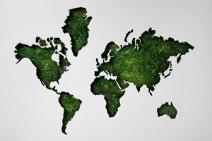 Map of World Made of Lush Forest by Thomas Northcut
