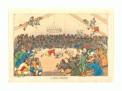 A Dog Fight, 1811