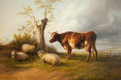 View in Stour Valley with Cow