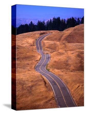 Winding Road at Mount Tamalpais, California, USA