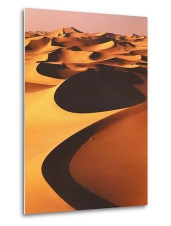 Algeria, Sahara, Great Western Erg, Oasis