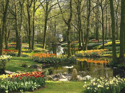 Netherlands, South Holland, Keukenhof, Flower Park, Spring by Thonig