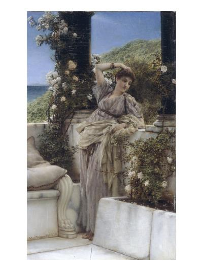 Thou Rose of all the Roses-Sir Lawrence Alma-Tadema-Giclee Print