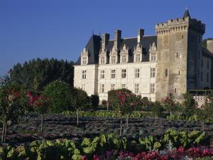 Gardens, Chateau De Villandry, Loire Valley, Centre, France, Europe by Thouvenin Guy