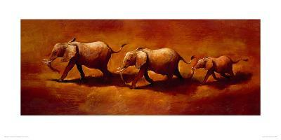 Three African Elephants-Jonathan Sanders-Giclee Print