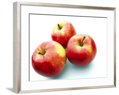 Three apples--Framed Photographic Print