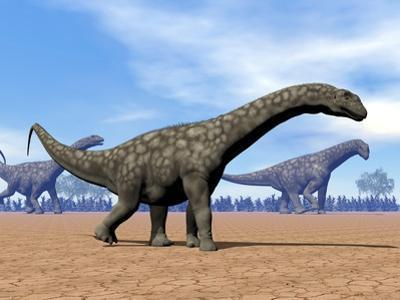 Three Argentinosaurus Dinosaurs Walking in the Desert