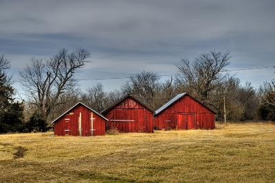 Three Barns, Kansas, USA-Michael Scheufler-Photographic Print