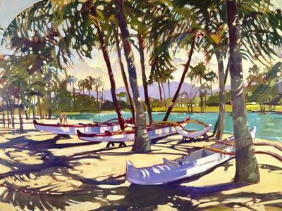https://imgc.artprintimages.com/img/print/three-canoes-and-palm-shadows_u-l-pn9jui0.jpg?p=0