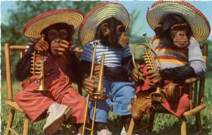 Three Chimpanzees with Brass Instruments and Hats