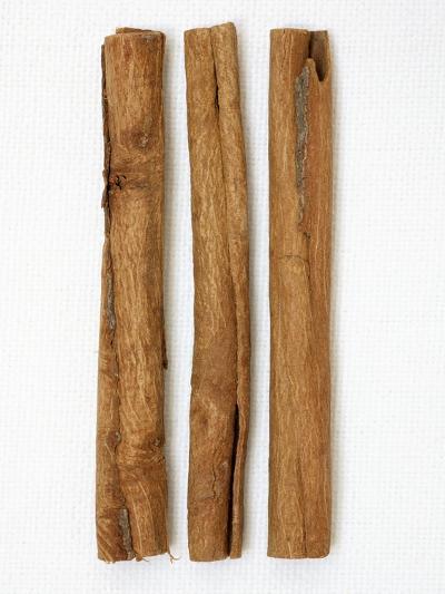 Three Cinnamon Sticks-Frank Tschakert-Photographic Print