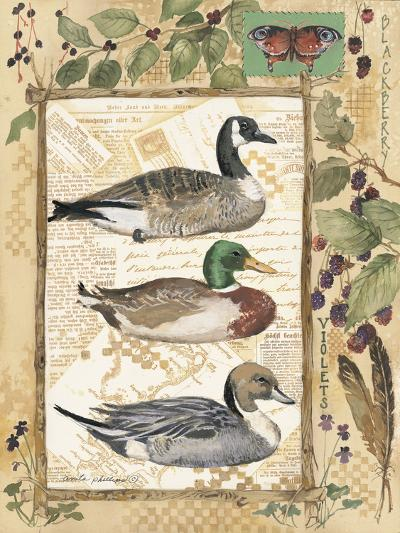 Three Ducks-Anita Phillips-Art Print