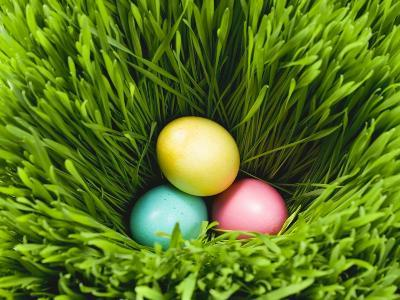 Three Easter Eggs in Grass--Photographic Print