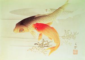 Three Fish by Beishu