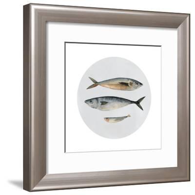 Three Fish I--Framed Art Print