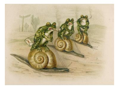 Three Frogs Mounted on Snails Race Each Other--Giclee Print
