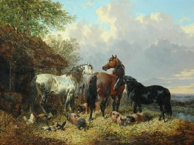 Three Horses with Pigs-John Frederick Herring Jnr-Giclee Print