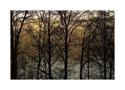 https://imgc.artprintimages.com/img/print/three-imagenings_u-l-f8p0fe0.jpg?p=0