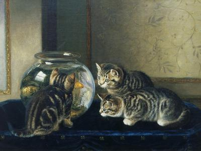 Three Kittens Watching Goldfish-Horatio Henry Couldery-Giclee Print