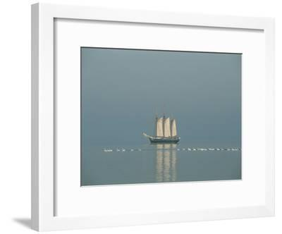 Three-Masted Schooner Shown with Swans in the Early Morning Light-Sisse Brimberg-Framed Photographic Print