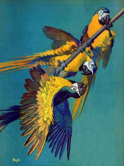 """Three Parrots,""March 11, 1939-Julius Moessel-Giclee Print"